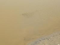 0713_JKIVA_folyók_18