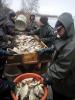 2016. tavaszi lehalászás